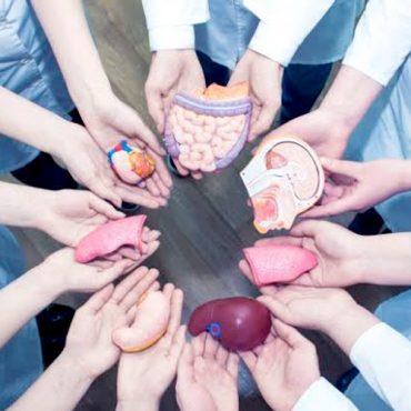 Sin donaciones no hay trasplantes