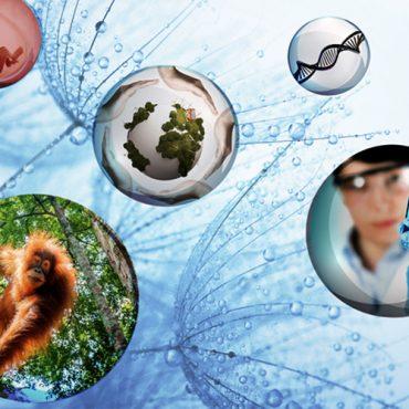 La bioética y la toma de decisiones difíciles